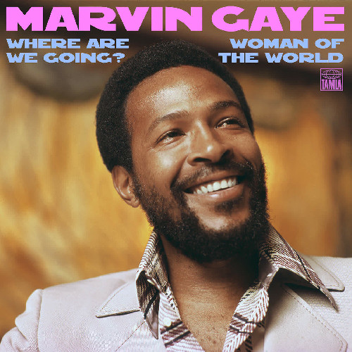 marvin-gaye-woman-of-the-world