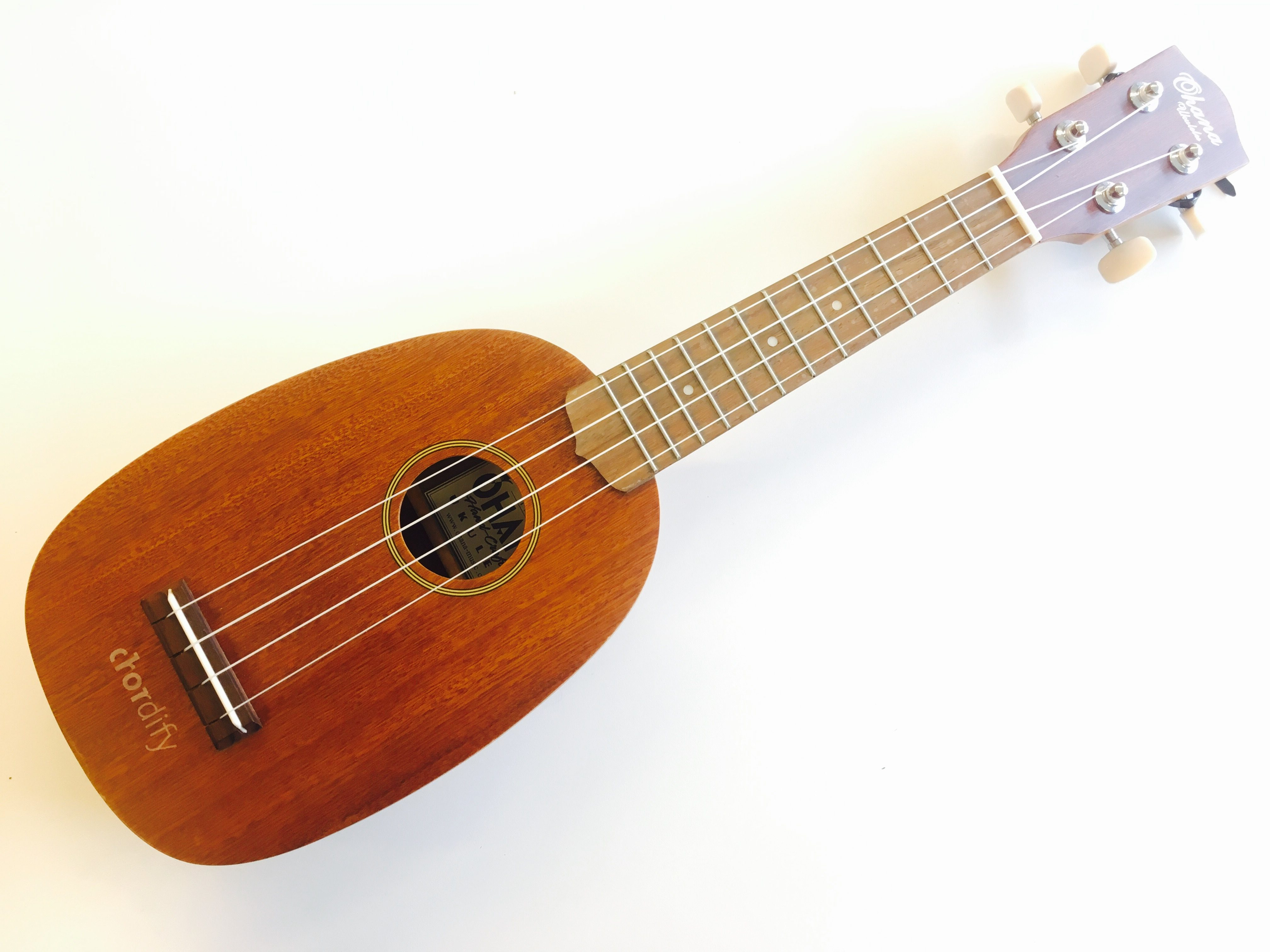 5 Essential Ukulele Accessories The Fun And The Functional